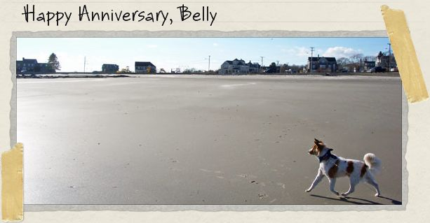 Happy Anniversary, Belly