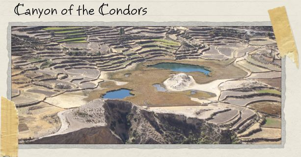 Canyon of the Condors