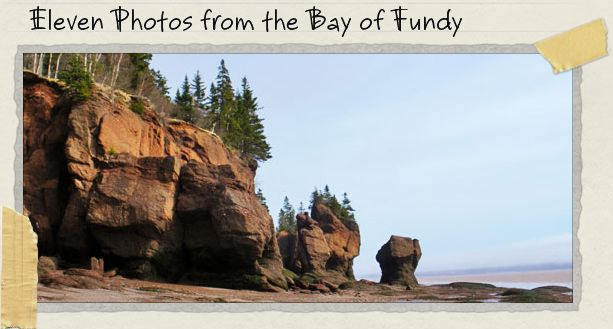 Eleven Photos from the Bay of Fundy