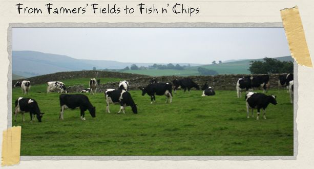 From Farmers' Fields to Fish n' Chips