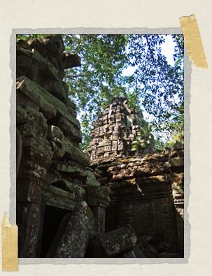 'At Ta Prohm, the jungle has been declared victor