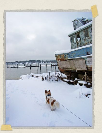 '...and the snow. This is the beach nearby our house which he loved to explore with us.