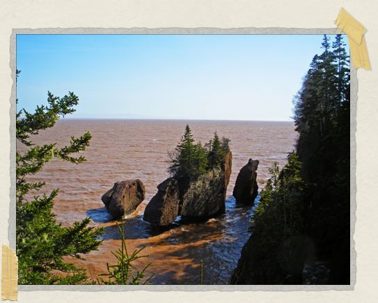 'Reportedly the Hopewell Rocks have the world record for the highest average tides found anywhere, reaching upward of 46 feet...