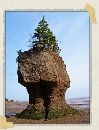 'This rock will be more than halfway submerged during high tide.