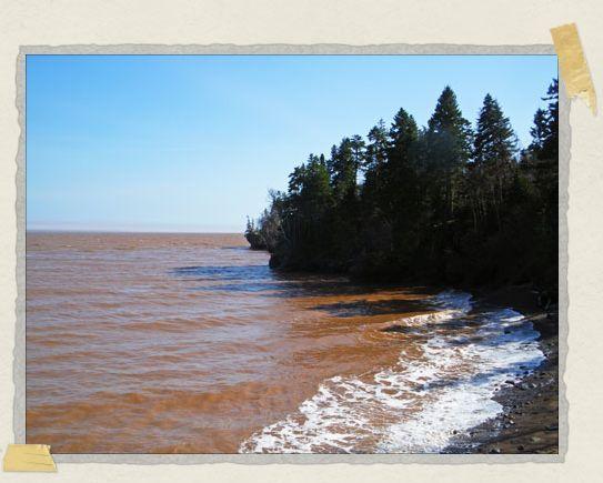 'High tide!
