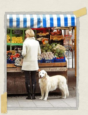 'Not only does this German lady like her dog, she enjoys color-coordinating with her dog too!