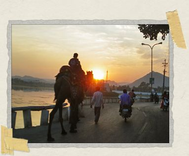 'A camel wades through the sunset traffic in breathtaking Udaipur, Rajasthan