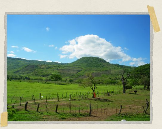 'The bus ride from Matagalpa to Managua rolled past fields of green and lush mountains in the distance