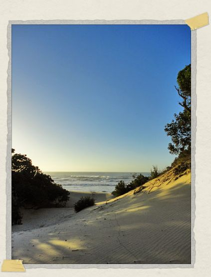 'The Indian Ocean beckons...