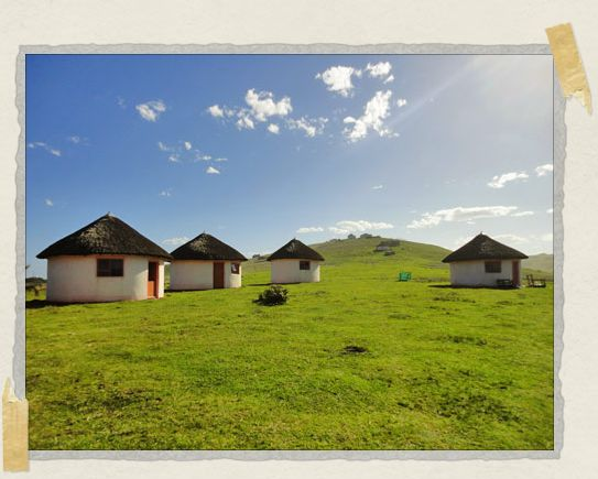 'Xhosa rondavels in the afternoon sun
