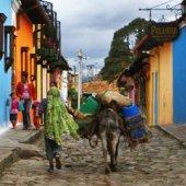 Feeling at Home in Bogota