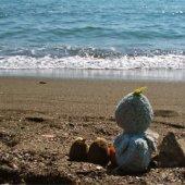 Picnics by the Sea